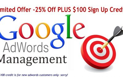 CHRISTMAS OFFER: 25% Off Adwords Management and $100 credit